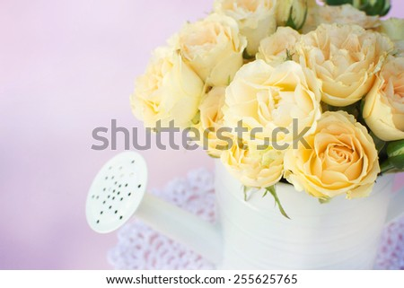 roses into the watering-can - stock photo