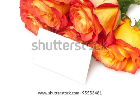 roses isolated on white with card
