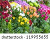Roses,Liliums,and daisies - stock photo