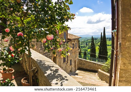 Roses on a balcony, cityscape of San Gimignano, cypress trees and Tuscany landscape in background, Italy - stock photo