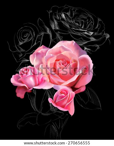 roses on a black background, with elements of the sketch, watercolor illustration - stock photo