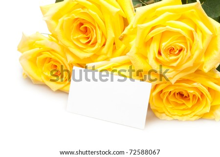 roses with empty card - stock photo
