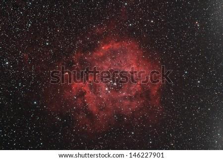 Rosette nebula in the dark night sky - stock photo