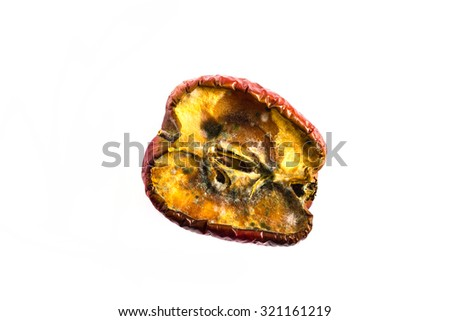 rot apple with  fungi on white background