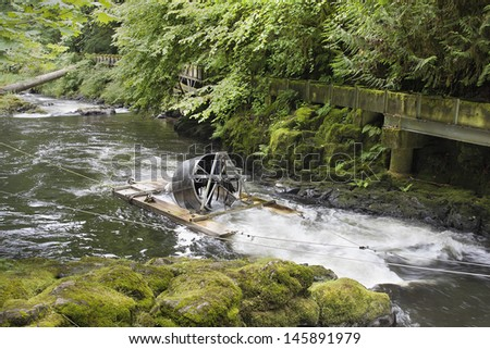 Steelhead trout stock images royalty free images for Wash state fishing reports