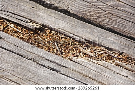Rotted wood on boardwalk path - stock photo