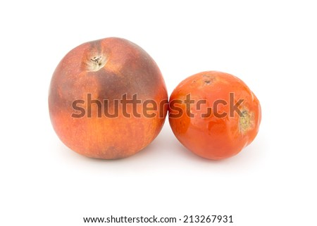 Rotten apple and tomato fruits isolated on a white background  - stock photo