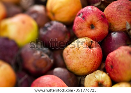 Rotten apples on a stack - stock photo