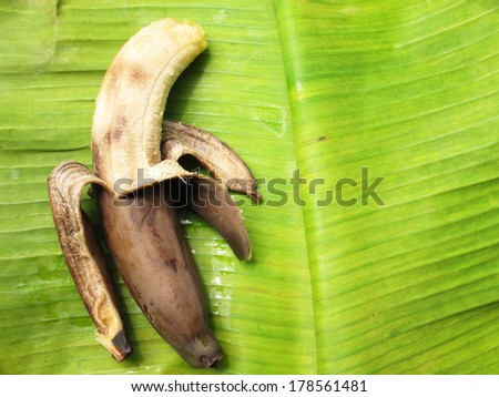 Rotten bananas on a banana leaf - stock photo