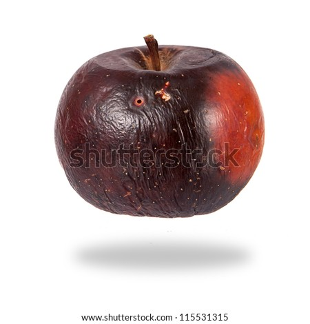 Rotten red apple isolated over white background - stock photo