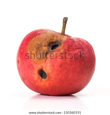Rotten red apple with holes on white background - stock photo
