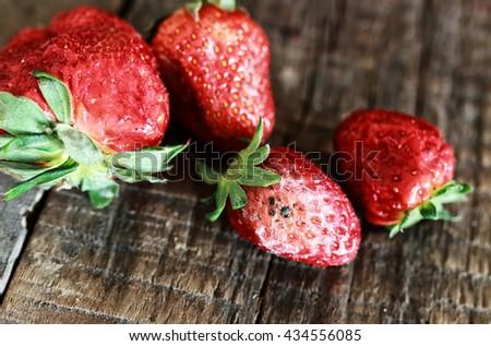 rotten strawberries concept gmo - stock photo