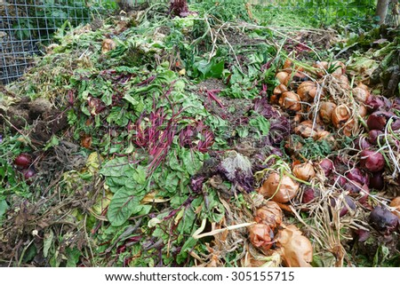 Rotting vegetables on the gardeners compost heap. - stock photo