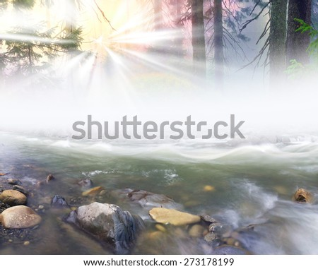 Rough river with fast-flowing after a storm in the fog on the background of a romantic landscape at sunrise for wild Carpathian forest wet stones glisten with dew