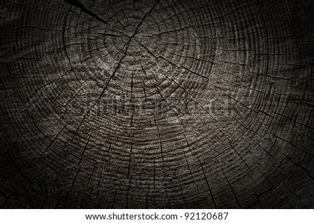 Rough textured wooden cut with tree rings and cracks - stock photo