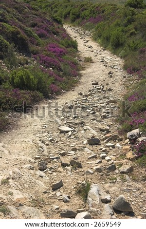 rough trail - stock photo