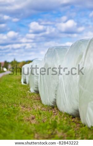 round bales for animal feeds - stock photo