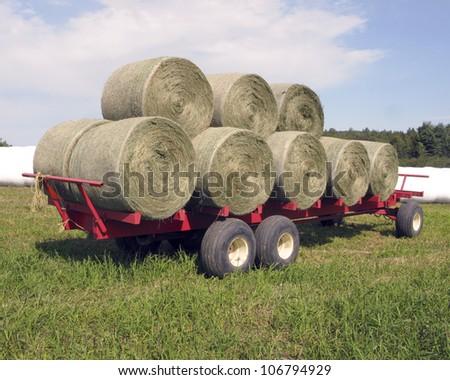 Round Bales of Hay - stock photo