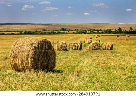 Round bales of straw in the farmland - stock photo