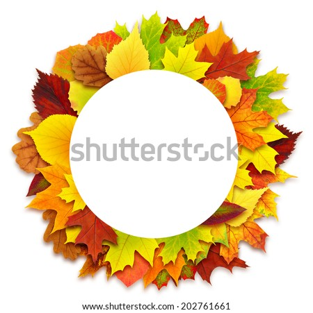 Round border of various autumn leaves isolated on white - stock photo