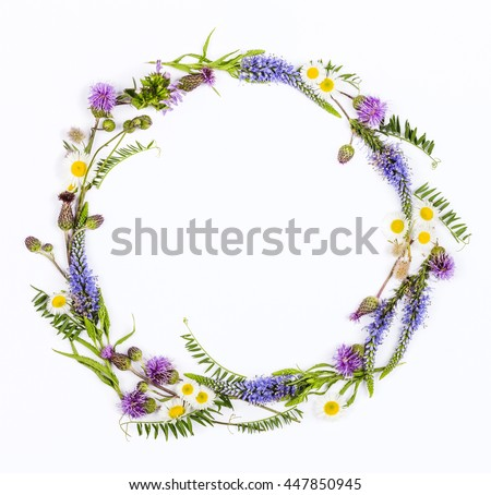 Round frame from wildflowers on white background. Top view. Flat lay.