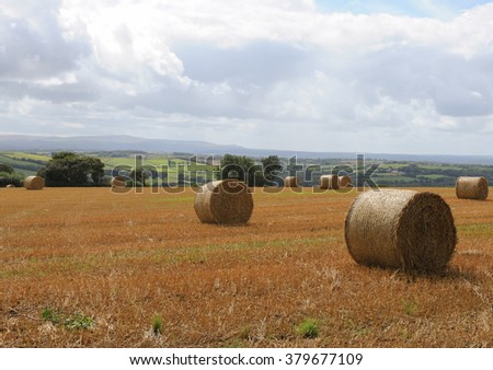 Round Hay Bales in a Field on the Ridge between Wembworthy and Winkleigh with the Peaks of Dartmoor National Park in the Background, Devon, England, UK - stock photo