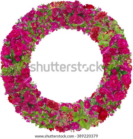 Round  photo frame made from pink summer roses branches buds and flowers. Abstract isolated collage - stock photo