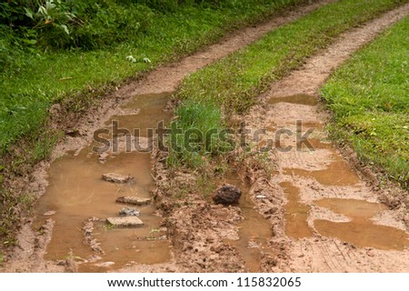 Route in rain forest . - stock photo