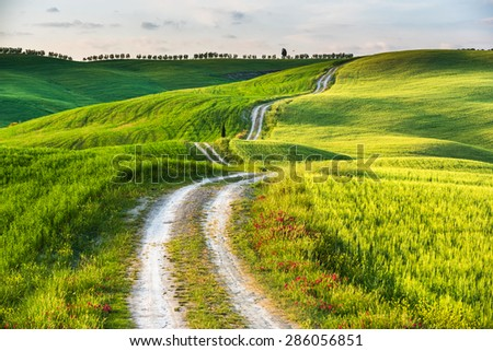 Route of the Tuscan countryside - stock photo