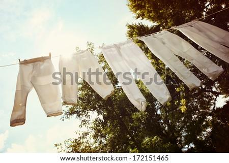 Row of baseball pants hanging up to dry - stock photo