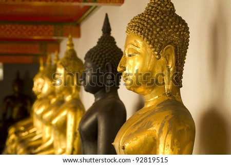 row of buddhas statue in Thailand (shallow dept of field)