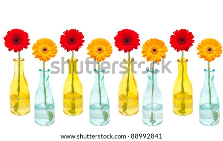 Row of flowers in colored glass vases