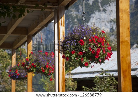 Row of hanging flower baskets on a porch in the sun, with mountains in distance