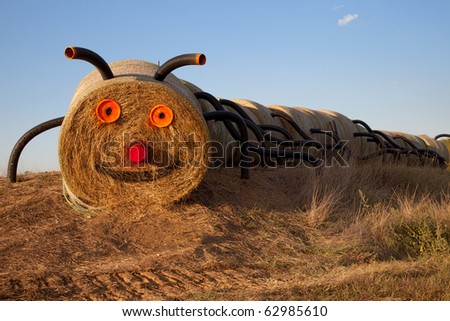 Row of hays disguised as a big bug - stock photo