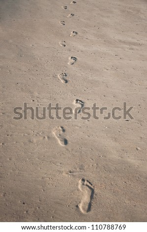 Row of human footprints on wet shelly sand - stock photo