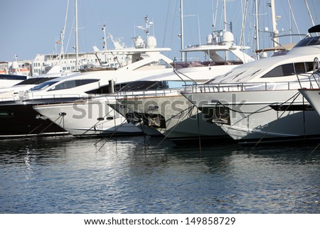 Row of luxury motorised yachts moored in a sheltered harbour, close up view of the bows