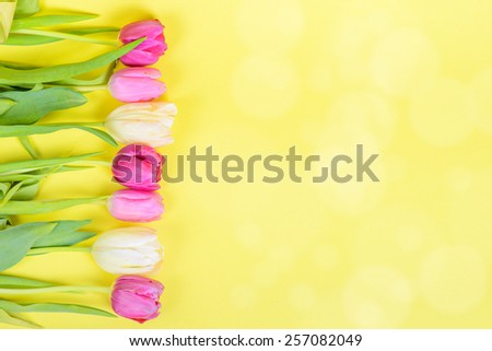 Row of multicolored tulips for border or frame - stock photo