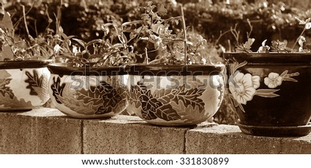 Row of old clay pots of flowers on sepia tone - stock photo