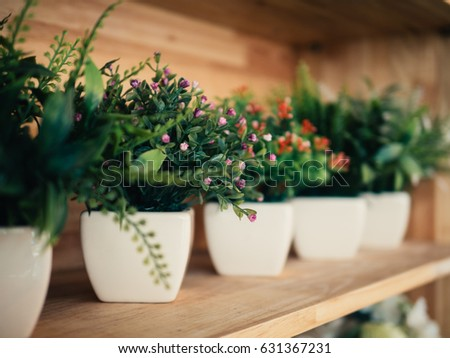 row of plastic plants in their pots on the wooden shelves in a porch in a