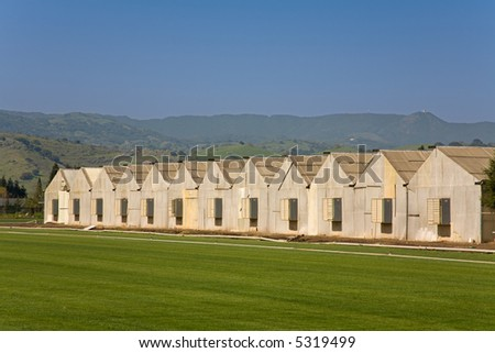 Row of Poultry Houses with Ventilation in the Ends (9745)