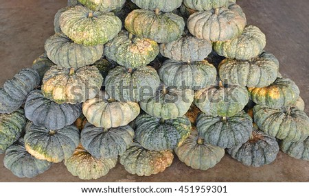 Row of Pumpkins in the market - stock photo