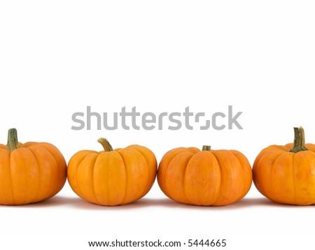 Row of pumpkins on white - stock photo