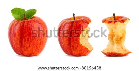 row of red apples on white background - stock photo