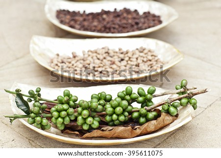 Row of Roasted Coffee Beans in Different Levels. All on Rustic Seashells Plate - stock photo