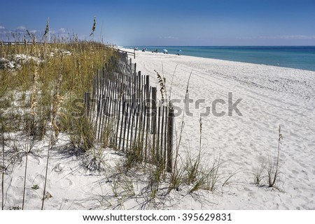 Row of sand fences protect dunes from erosion on white sand beach in Florida on the Gulf of Mexico.