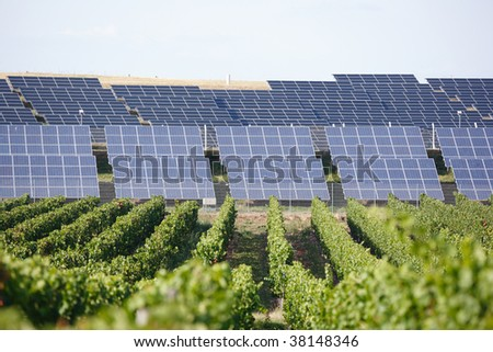 row of solar panels and vineyard in foreground - stock photo
