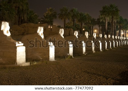 Row of sphinxes at Luxor Temple in Egypt by night