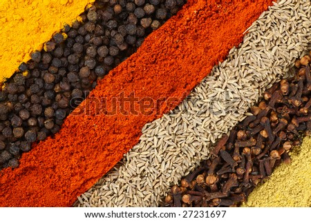 Row of spices - stock photo