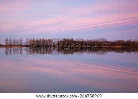 Row of trees reflected in water and a magenta sky