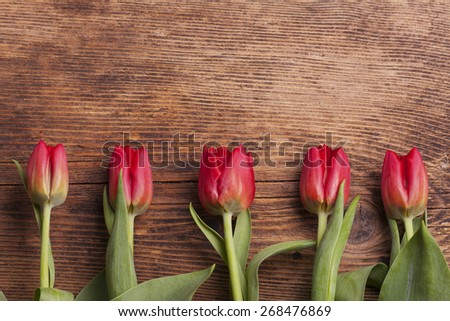 row of tulips on dark wood  - stock photo
